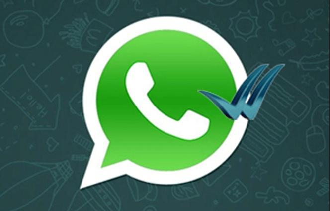 Whatsapp c mo leer los mensajes de whatsapp sin que nadie for Porque no calienta el ultimo radiador