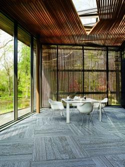 Un toque de naturaleza en la oficina aumenta la productividad