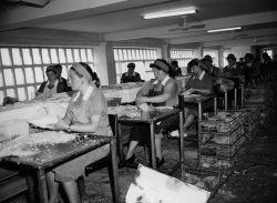 El italiano que se enamoró de las anchoas de Santoña