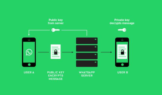 ¿De qué sirve y cómo se utiliza el nuevo código QR de WhatsApp?