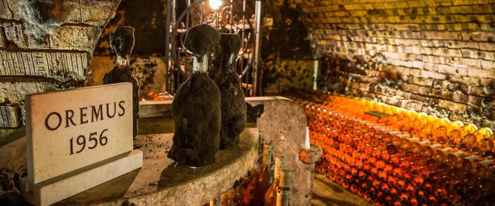El Vino Más Caro De Vega Sicilia Se Hace En Hungría