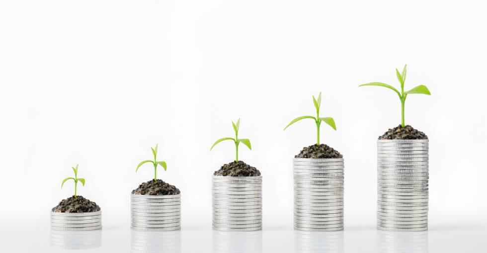 Sostenibilidad y rentabilidad, una pareja bien avenida a la hora de invertir